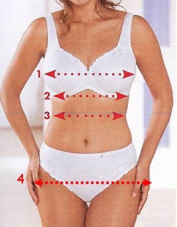 D finir votre taille de lingerie - Taille des hortensias en mars ...
